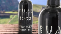 Vintage Madeira